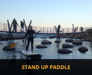stand up paddel